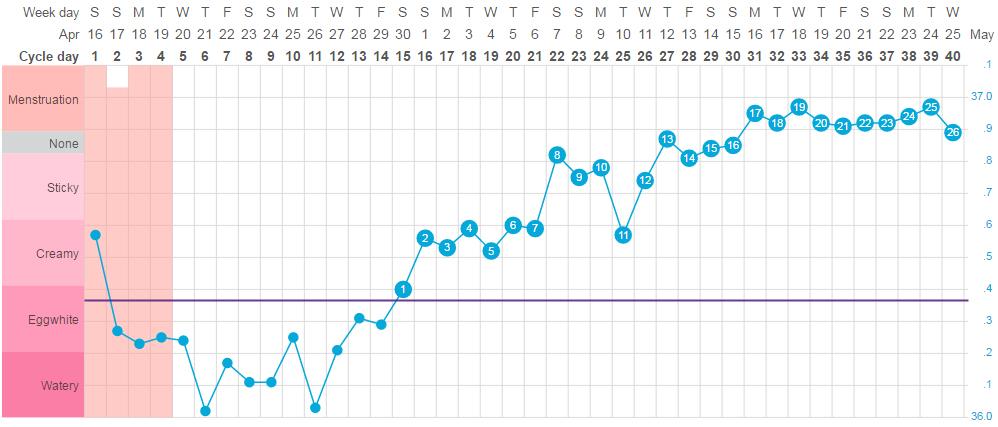 Uitleg Bbt Chart Luteale Fase Tcm Acupunctuur Eindhoven